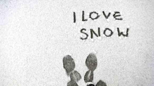 Snowy Gloucester 18.01.13 - 10