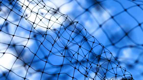 Netting and sky 02.06.13
