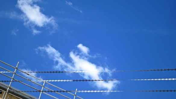 Razor wire 04.06.13 - 5