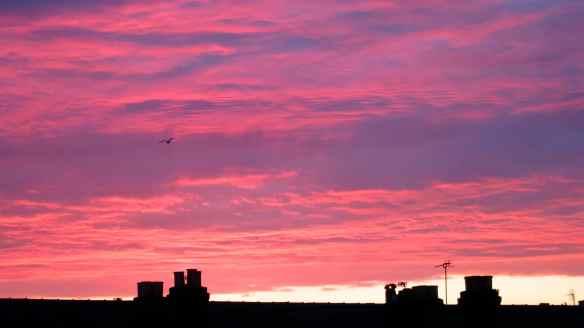Sunset  17.06.13 - 2