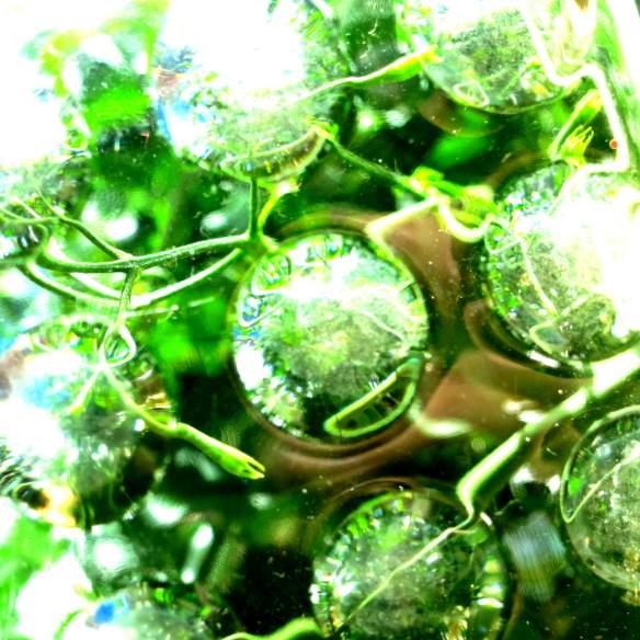 Green glass 26.04.14